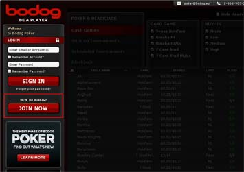 Bodog Poker Download