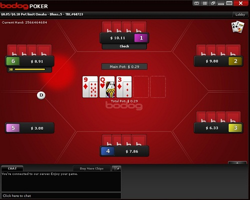 Bodog Poker Table