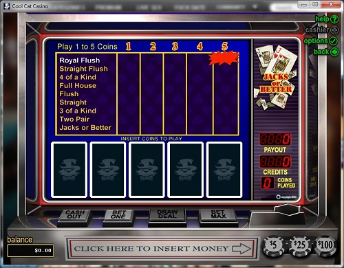 Cool Cat Casino Video Poker