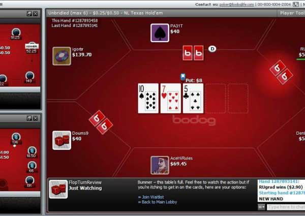 Free tri card poker bodog