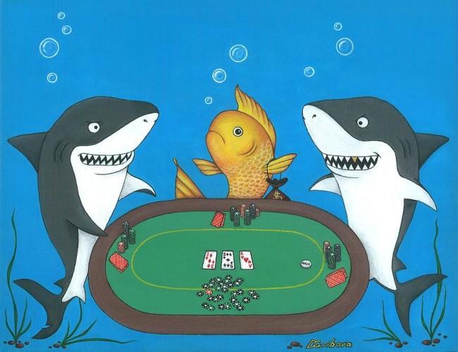 poker-sharks-darya-hrybava